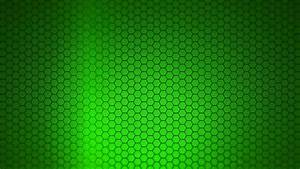 Green Background 05