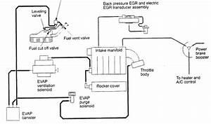 2000 Chrysler Cirrus Vacuum Line Diagram  2000  Free