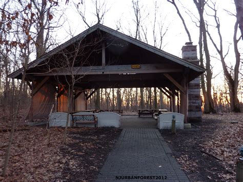 backyard picnic shelter plans plans diy  treasure