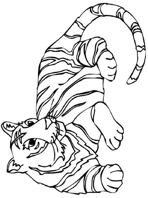 tigers coloring pages   print tigers coloring