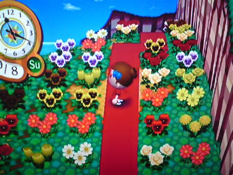 5 Ways To Have A Lovely Town On Animal Crossing City Folk