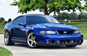 2003/04 Ford Mustang SVT Cobra | Mustang cars, Ford mustang, 2003 ford mustang