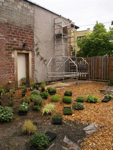 How To Start A Vertical Garden by How To Start A Vertical Garden Vertical Gardens Are An