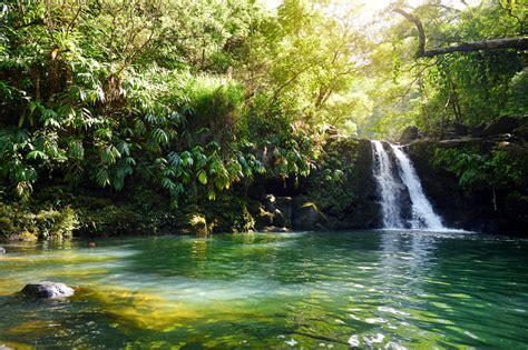 Nature | Hawaii Travel Guide