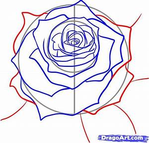 100 best How to draw tutorials: Flowers images on ...