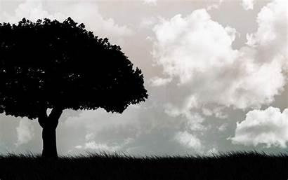 Wallpapers Sky Tree Dark Abstract Nature Trea