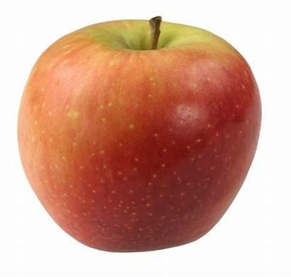 Apple Apples Aroma Benefits Health Choy Bok