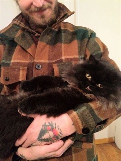 princess monster truck  cat   underbite
