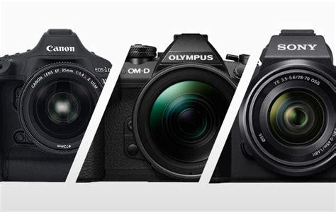 Best Dslr Cameras For Wildlife Photography