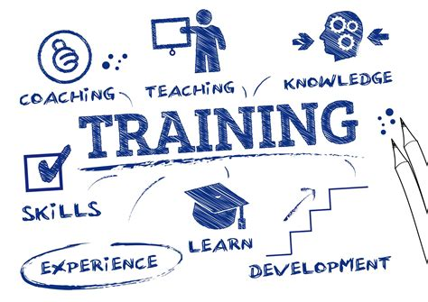 Why Your Company Needs Training & Development  Tortal. What Is Objective In Resume. Sample Certificate Of Project Completion Template. Superhero Logo Template. Treasure Chest Template. Old Word For Christmas Template. Powerpoint Design Templates. Modern Fonts For Logo Template. Class Newsletter Template Free