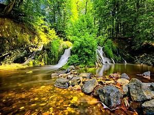 foresta cascata pietre hd desktop wallpaper: widescreen ...