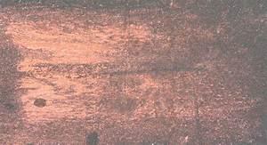 Rose Gold Wandfarbe : metallic glimmer schimmer glitzer caparol ~ Frokenaadalensverden.com Haus und Dekorationen