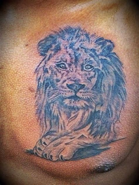 lion tattoos images pictures page  tattoos hunter