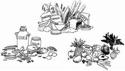 Alimentos Hesperian Health Variados Comer Ricas Frutas