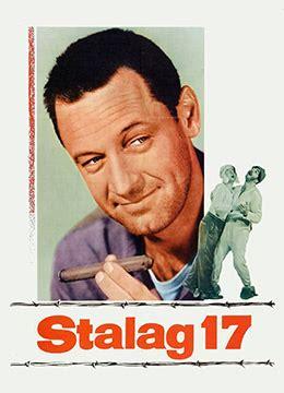《战地军魂》1953年美国剧情,喜剧,战争电影在线观看_蛋蛋赞影院