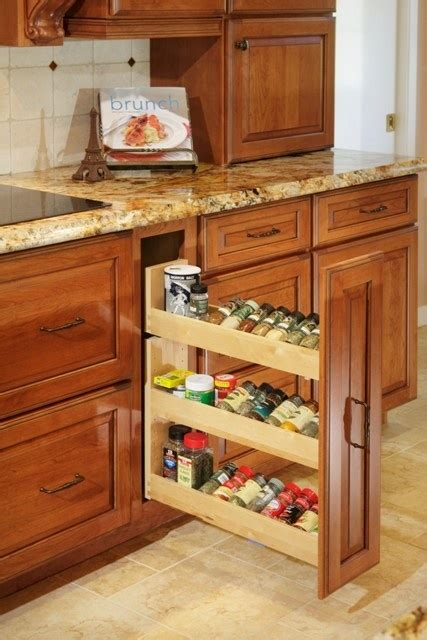 kitchen cabinets for 1000 images about kitchen ideas on cabinets 7679