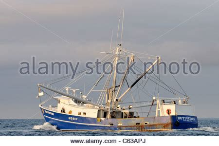 How To Fish For Cod From A Boat by Cod Fish Off A Boat In Iceland Stock Photo 24912129 Alamy