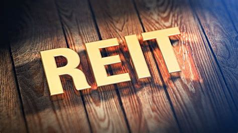 pros  cons  owning  equity reit