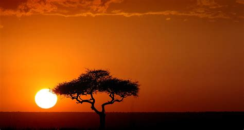5 bright startups lighting up the african continent using