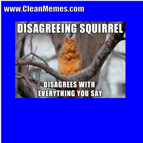 Memes And Everything Funny - everything you say clean memes the best the most online