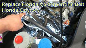 Replace Honda V6 Serpentine Drive Belt
