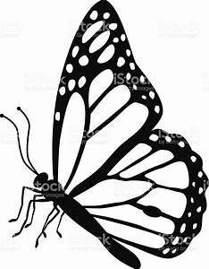 Monarch Butterfly Side View In Black And White Stock ...