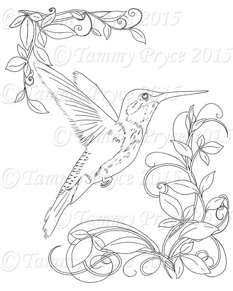 Humming Bird Adult Coloring Page Digi Stamp Instant