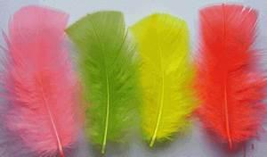 Bulk Turkey Plumage Feathers for Sale Best Quality