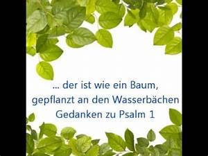 Baum Am Wasser : der ist wie ein baum gepflanzt an wasserb chen youtube ~ A.2002-acura-tl-radio.info Haus und Dekorationen