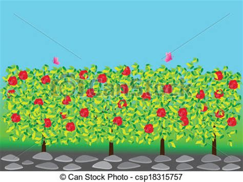 Rose garden. Illustration of red roses and butterflies