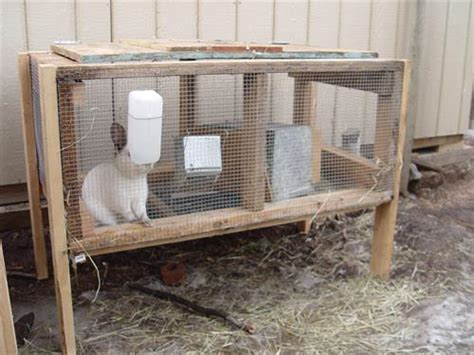 wood pallet rabbit hutch pallets designs