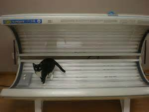 wolff system sunquest pro 24rs tanning bed in great