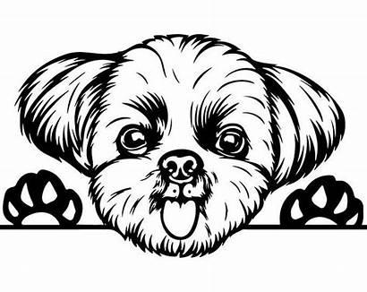 Shih Tzu Peeking Dog Svg Clipart Puppy
