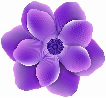 Purple Flower Clipart Clip Transparent Flowers Petals
