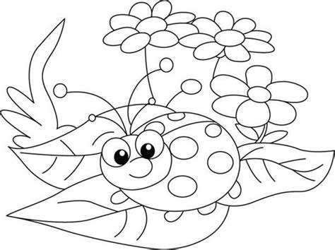 ladybug exploring  nature coloring page animal