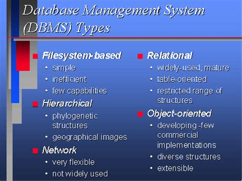 management system dbms types