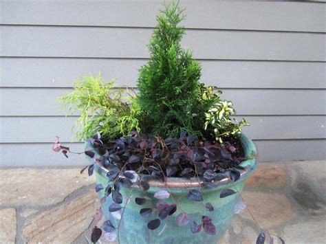 4 Ideas For Fallwinter Container Gardens