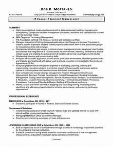 Incident management resume the best resume for Cover letter for emergency management position
