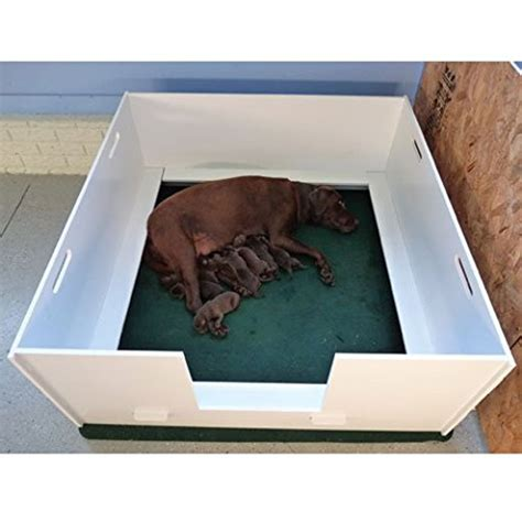 Whelping Box Bedding by The 3 Best Dog Whelping Boxes Adapted To Your Breed