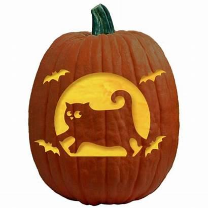 Pumpkin Carving Bat Cat Patterns Halloween Pattern