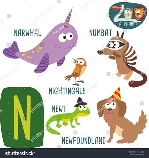 cute zoo alphabet  vector  letter funny cartoon