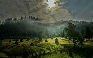 landscape, nature, morning, sunlight, sky, mist, field, forest, hills, fence, trees, green, clouds, hay