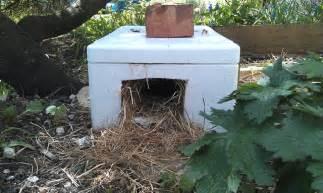 home made hedgehog house