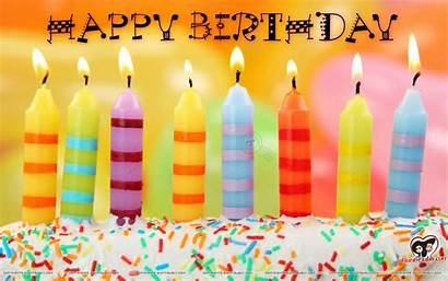 Birthday Happy Funny Backgrounds Wallpapers Android