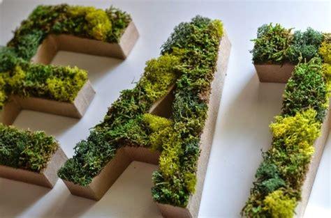 Pflanzen Bilder Selber Machen by Deko Moos Selber Machen 18 Au 223 Ergew 246 Hnliche Diy Ideen Mit