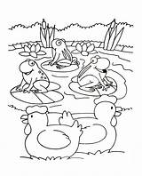 Coloring Farm Children Adult Justcolor sketch template