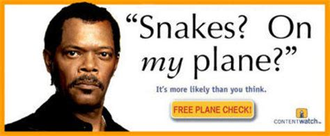 Snakes On A Plane Meme - it s more likely than you think know your meme