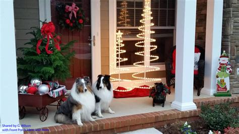 front porch pets and pictures silly dogs photos