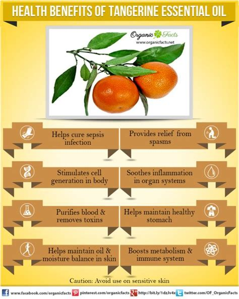 7 benefits of tangerine essential organic facts