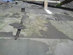 Vinyl Asbest Platten : sind diese asbest eternittplatten gef hrlich verwittert ~ A.2002-acura-tl-radio.info Haus und Dekorationen
